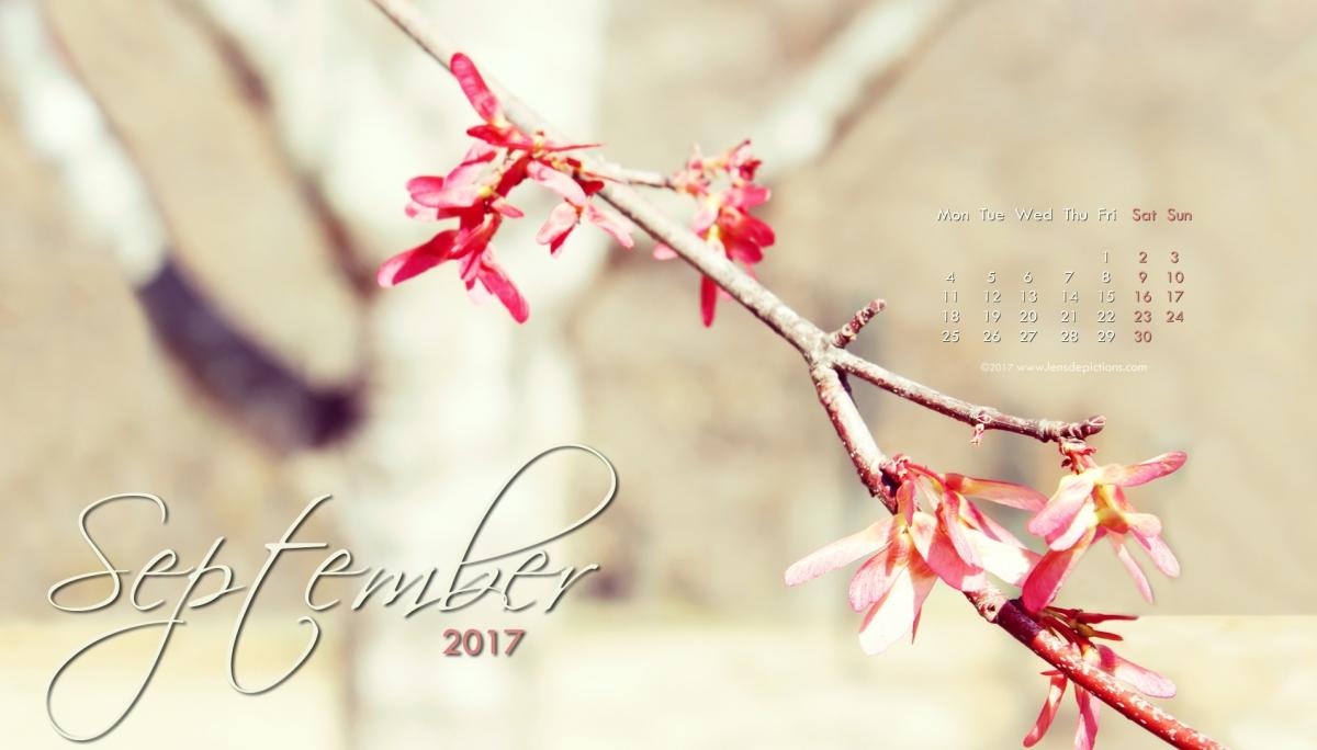 A Sunlit flower branch & September 2017 Free Desktop Calendar Wallpaper!